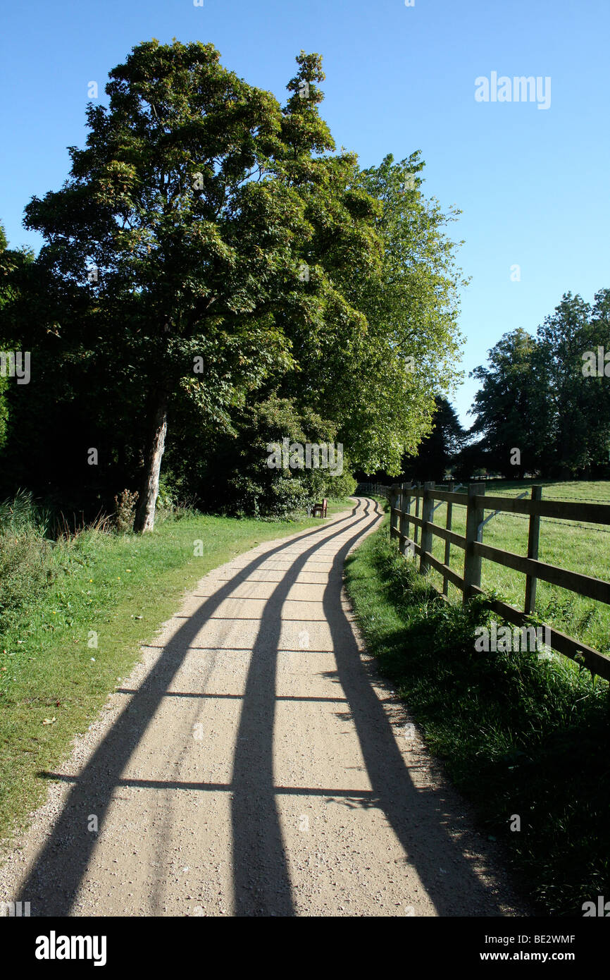Fence shadow on path - Stock Image