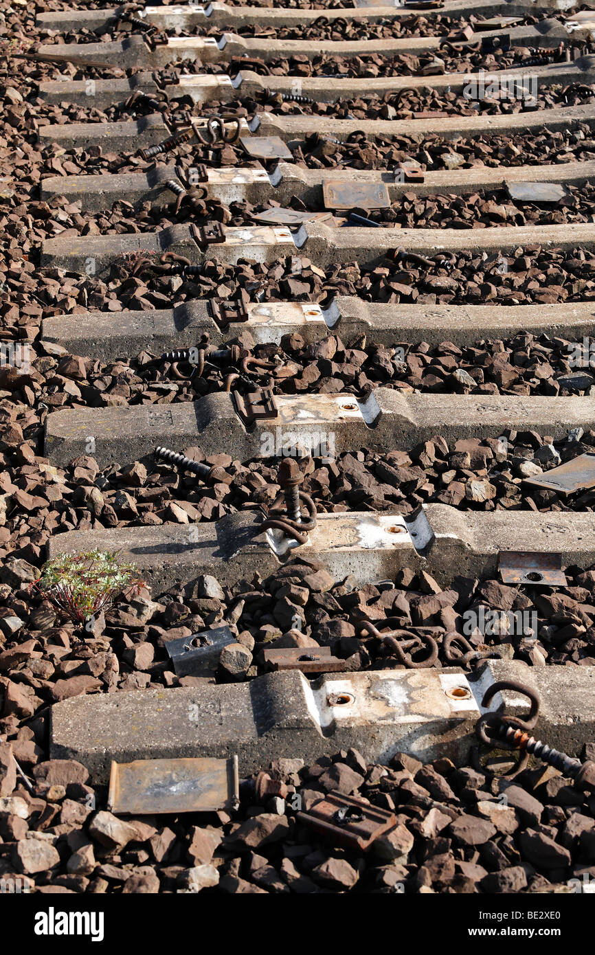 Row of concrete railway sleepers with dismounted tracks, abandoned shunting yard, Duisburg-Wedau, Ruhr area, North - Stock Image
