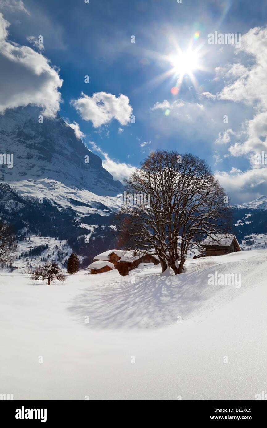 Winter landscape, Grindelwald, Jungfrau region, Bernese Oberland, Swiss Alps, Switzerland - Stock Image