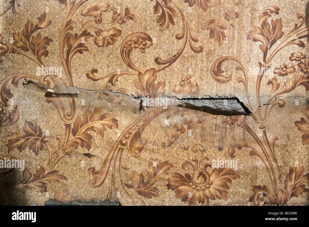 old victorian sanitary wallpaper with a floral pattern or motif
