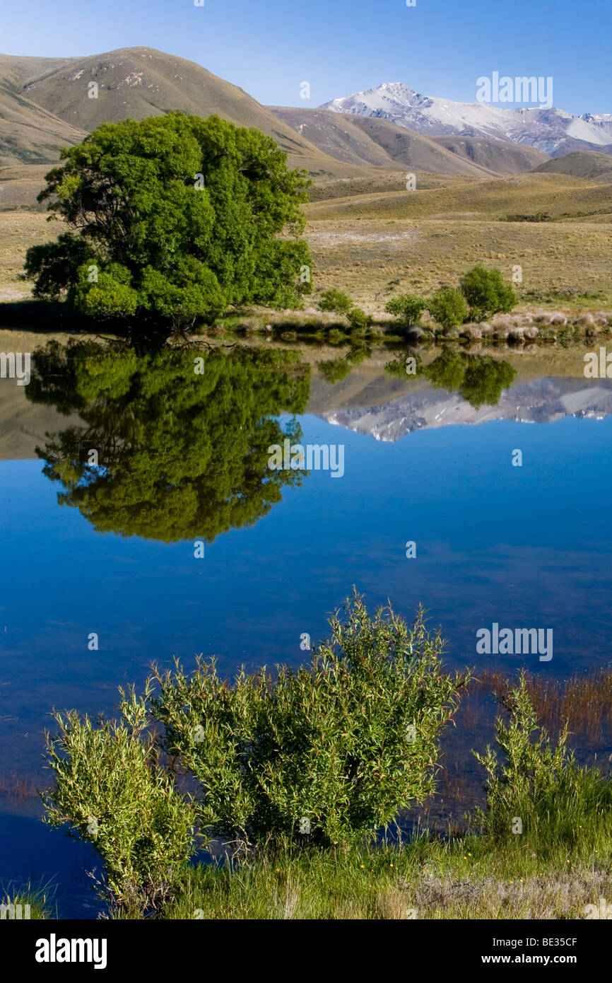 Water reflections of trees and mountains on a lake, Hakatere, South Island, New Zealand Stock Photo
