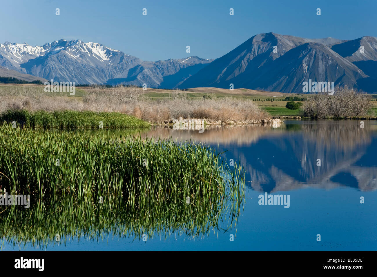 Water reflections on the banks of Lake Maoris in the morning light, South Island, New Zealand - Stock Image
