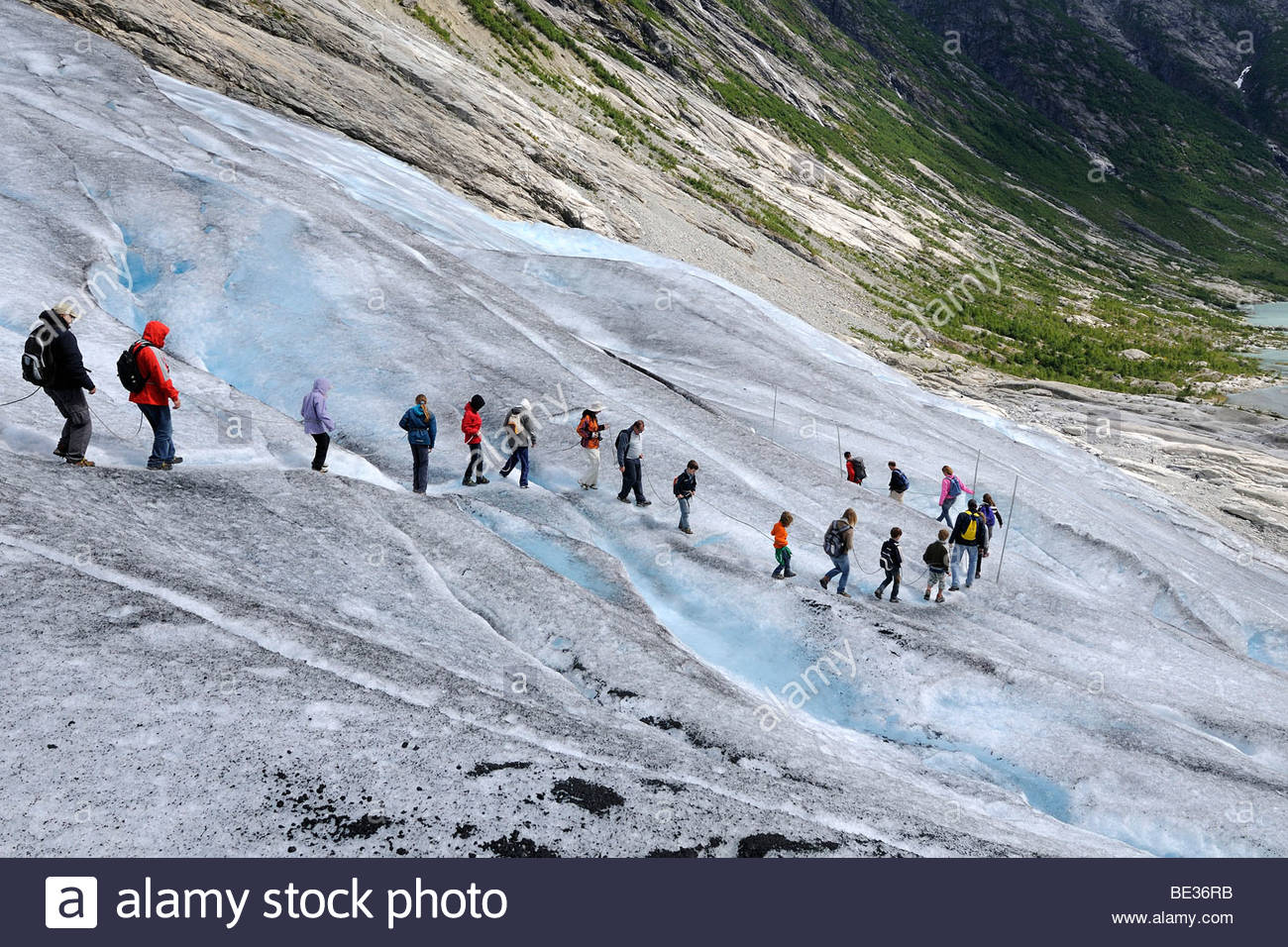Glacier hike, guided tour, family tours, tourists hikers, rope, crampons, glacier tongue Nigardsbre, an offshoot - Stock Image
