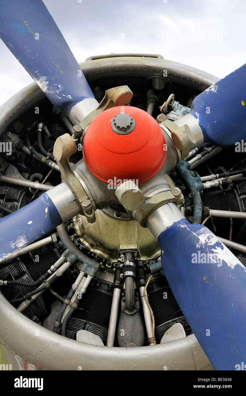 ASch-62 IR radial engine and propeller on an Antonov AN-2 biplane - Stock Image