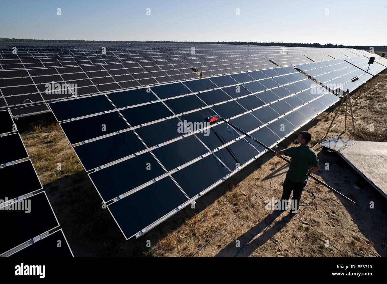 Germany's largest solar farm in Lieberose, Spreewald, Brandenburg, Germany, Europe - Stock Image