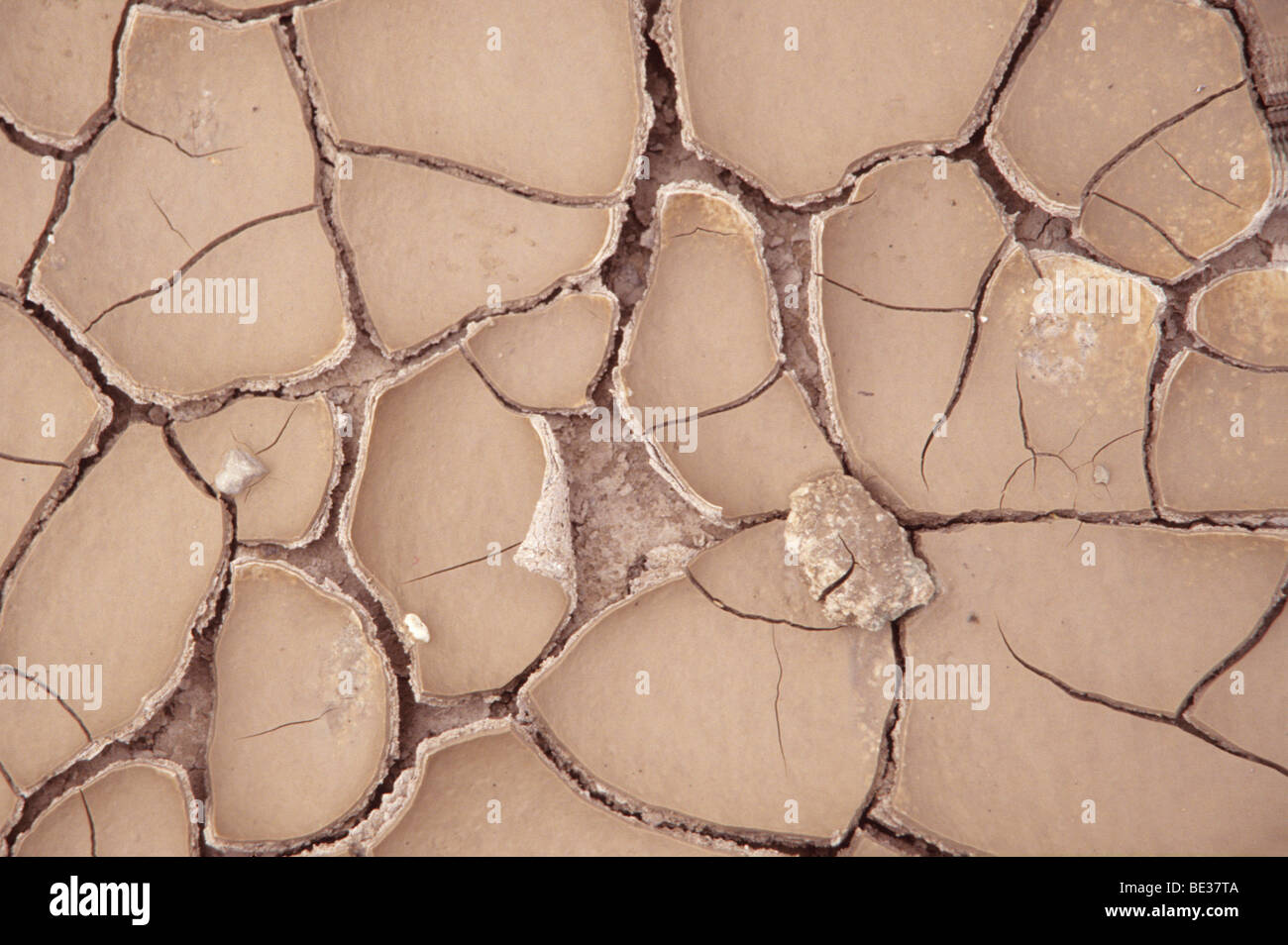 River bed after a long drought, detail - Stock Image