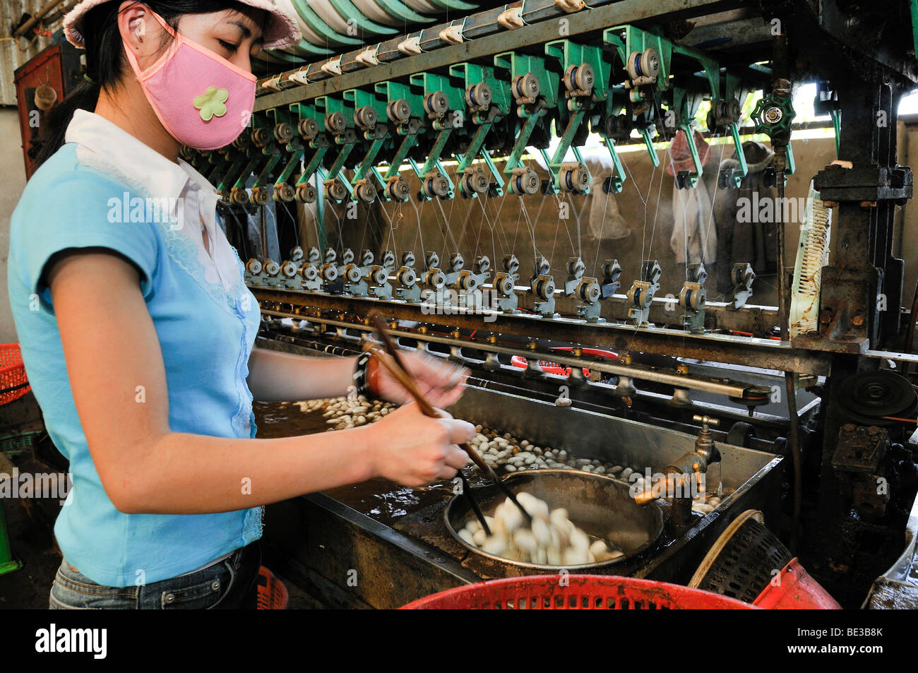 Woman with face mask working in a silk factory, cocoons floating in water, silk is removed and wound on spindles, - Stock Image