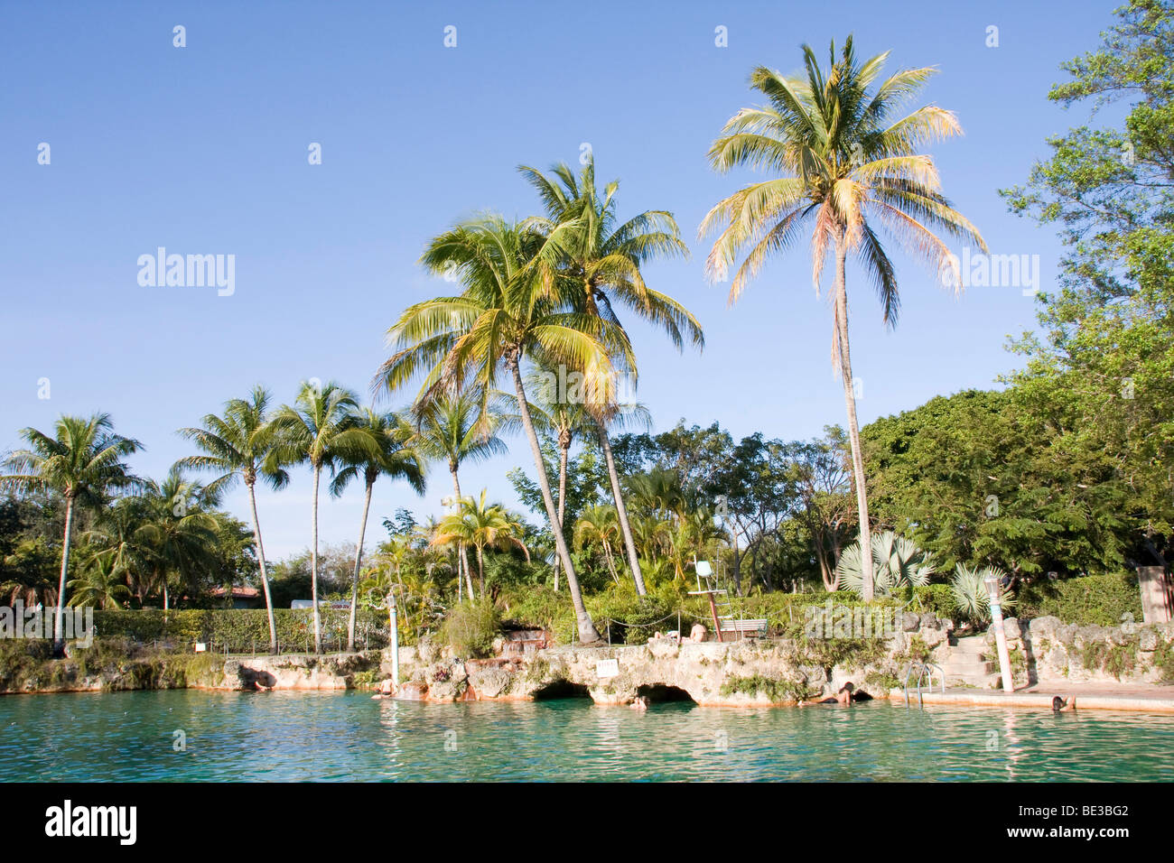 Swimming pool, Venetian Pools in Coral Gables, Miami, Florida, USA - Stock Image