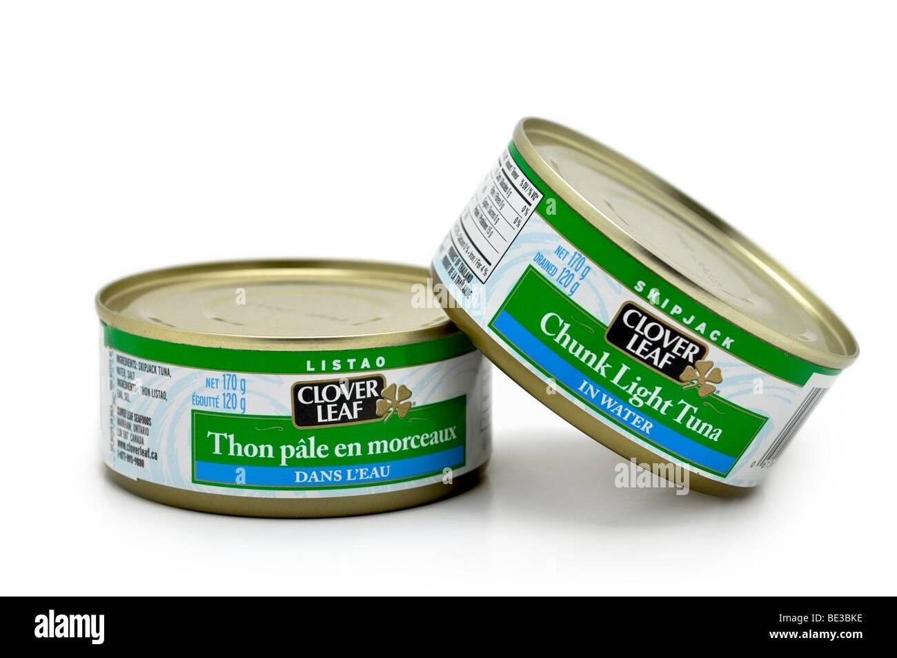 Tinned Chunk Light Tuna in Water. - Stock Image