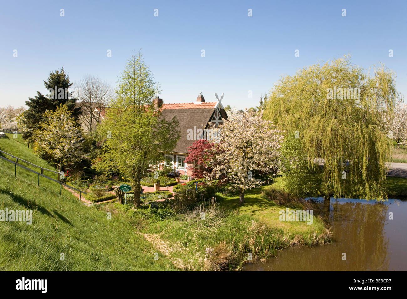 Regional farmhouse idyllically located on a pond in Gruenendeich, Altes Land, Lower Elbe, Lower Saxony, North Germany, - Stock Image