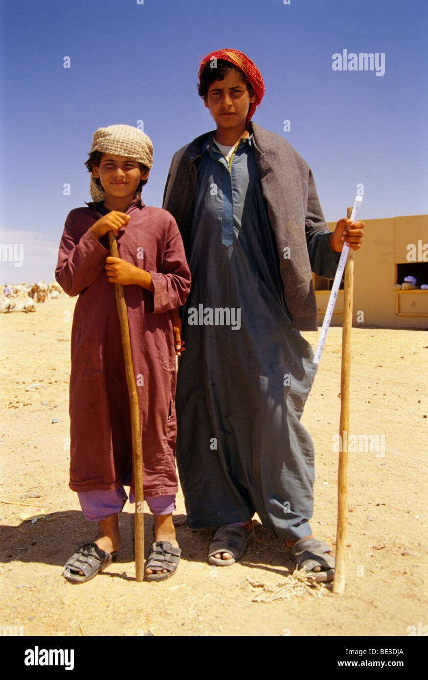Camel shepherds, Bedouins in traditional dress, Egyptians, portrait, Dschjellahba, Jelleba, clothes, Arabian, Egyptian, Stock Photo
