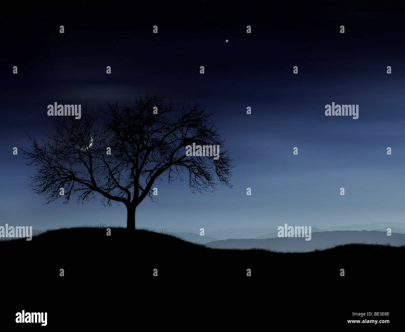 Digitally generated image of a tree and the moon. - Stock Image