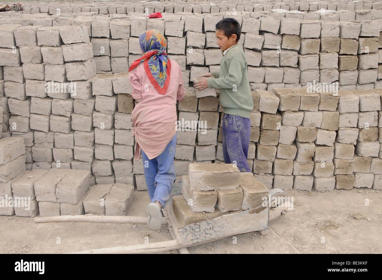 Brickmakers with child labor near Shey, Ladakh, India, Himalayas, Asia - Stock Image