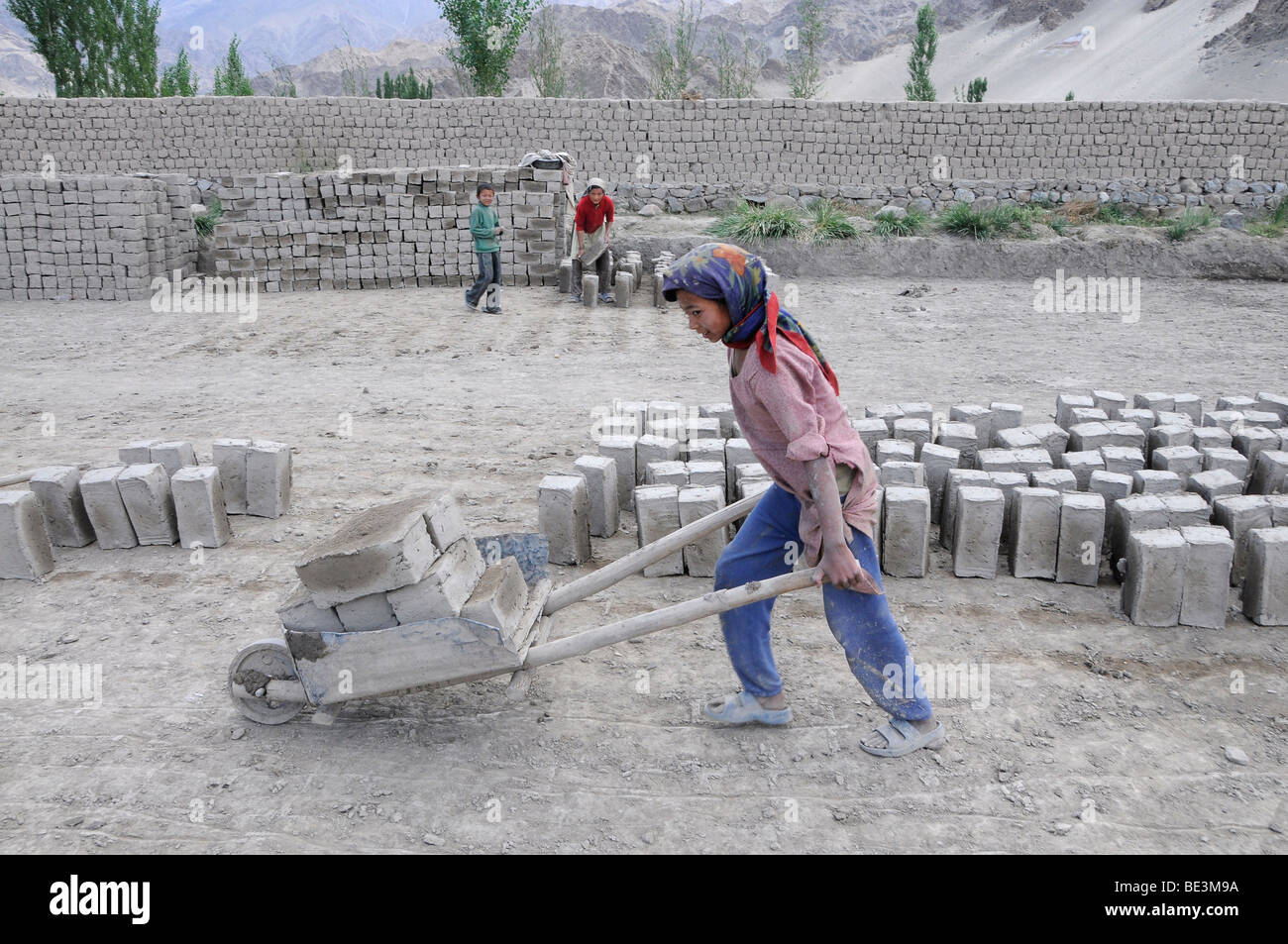 Girl pushing a wheelbarrow with bricks in a brickyard that manufactures air-dried bricks in the Indus valley, Traktok, - Stock Image