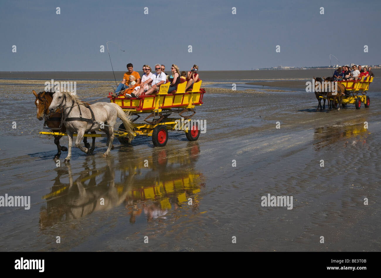 Germany, Lower Saxony, North Sea, tourists traverse the mudflats from Neuwerk Island to Cuxhaven by horse carriages - Stock Image
