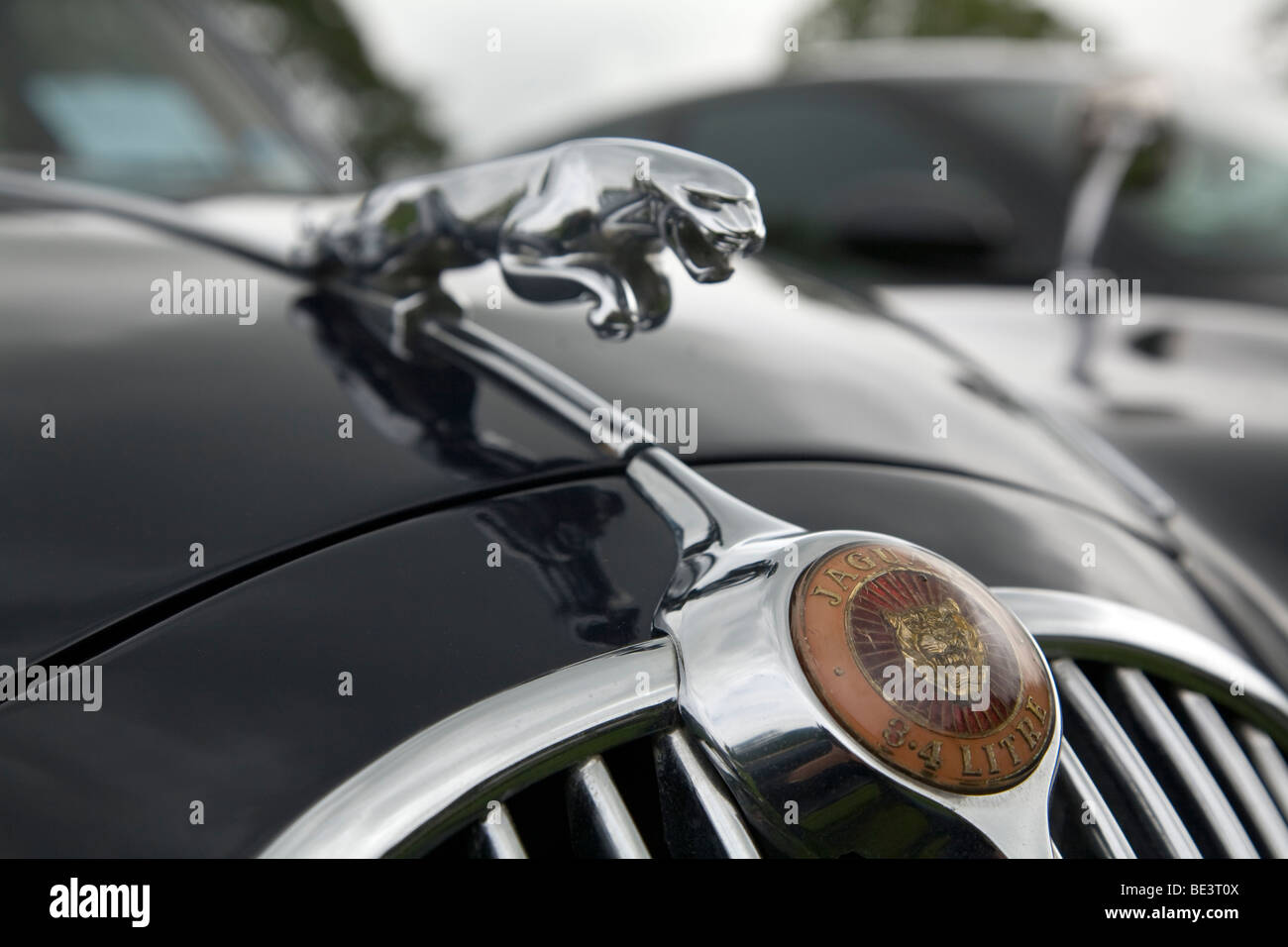 Leaping jaguar hood ornament
