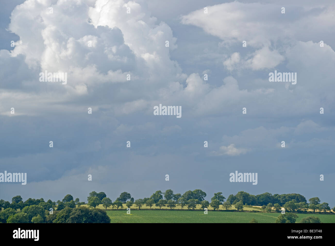 Skyscape, skyline, near Chipping Campden, Gloucestershire, Cotswolds, England, July, 2009 - Stock Image