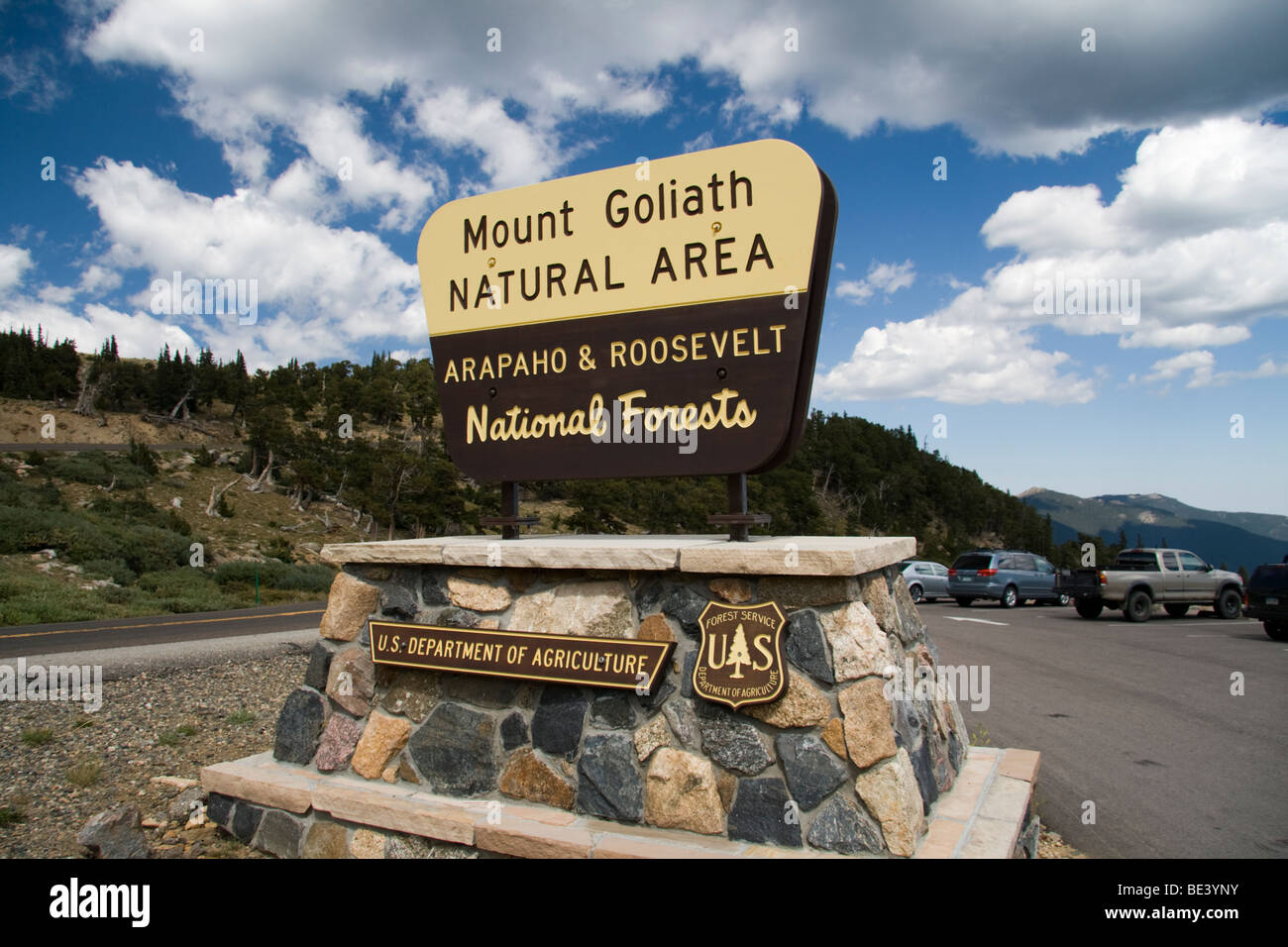 Mount Goliath Natural Area, Arapaho and Roosevelt National Forests, Colorado, USA - Stock Image