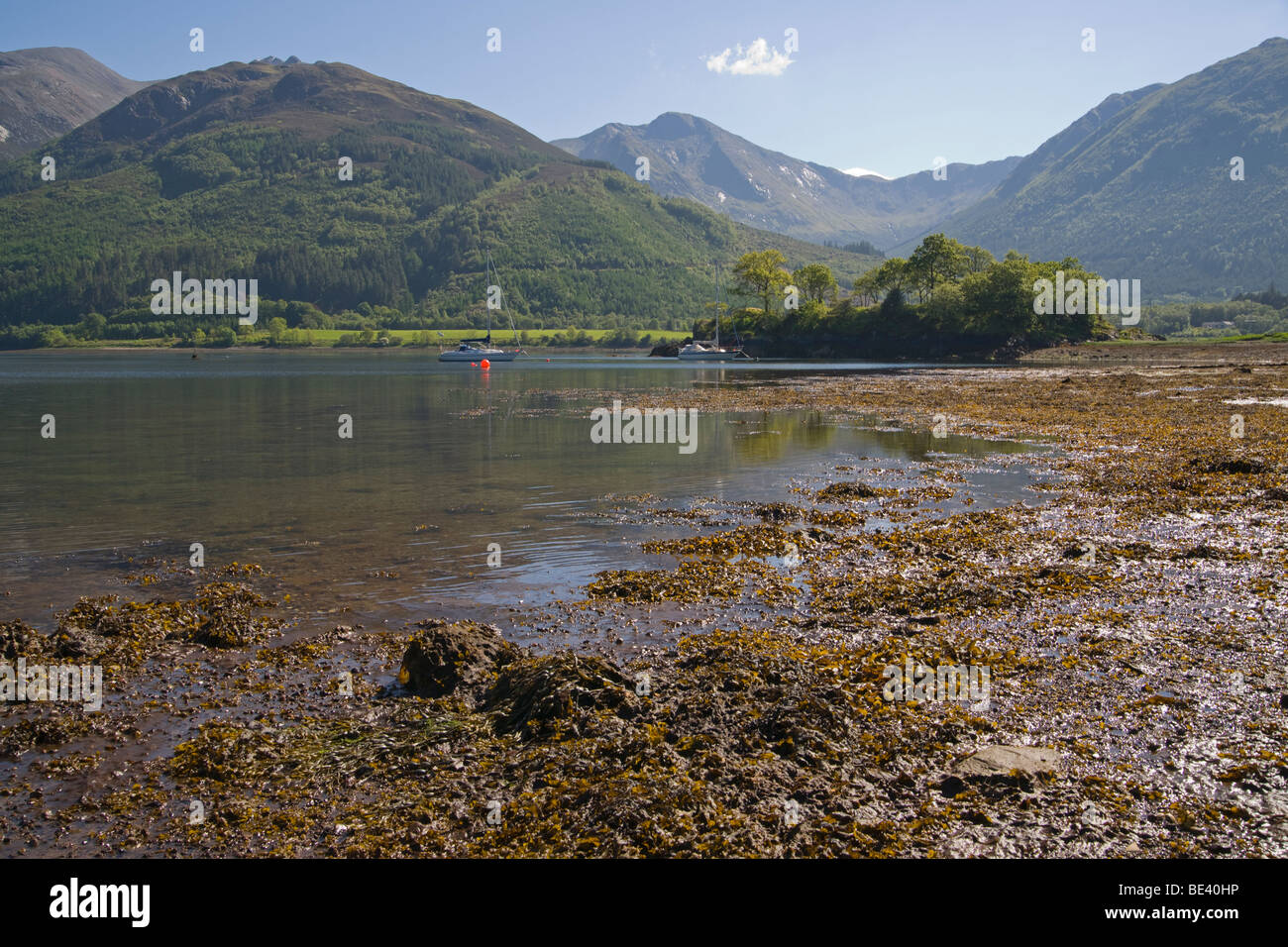 Loch Leven, Bishop's Bay, looking to Glencoe, North Ballachulish, Highland Region, Scotland, June, 2009 - Stock Image