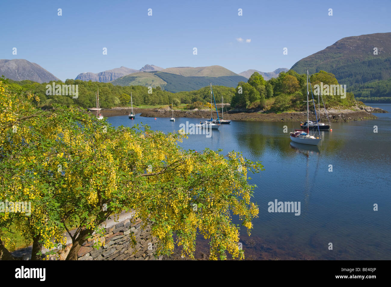 Loch Leven, Bishop's Bay, North Ballachulish, Highland Region, Scotland, June, 2009 - Stock Image