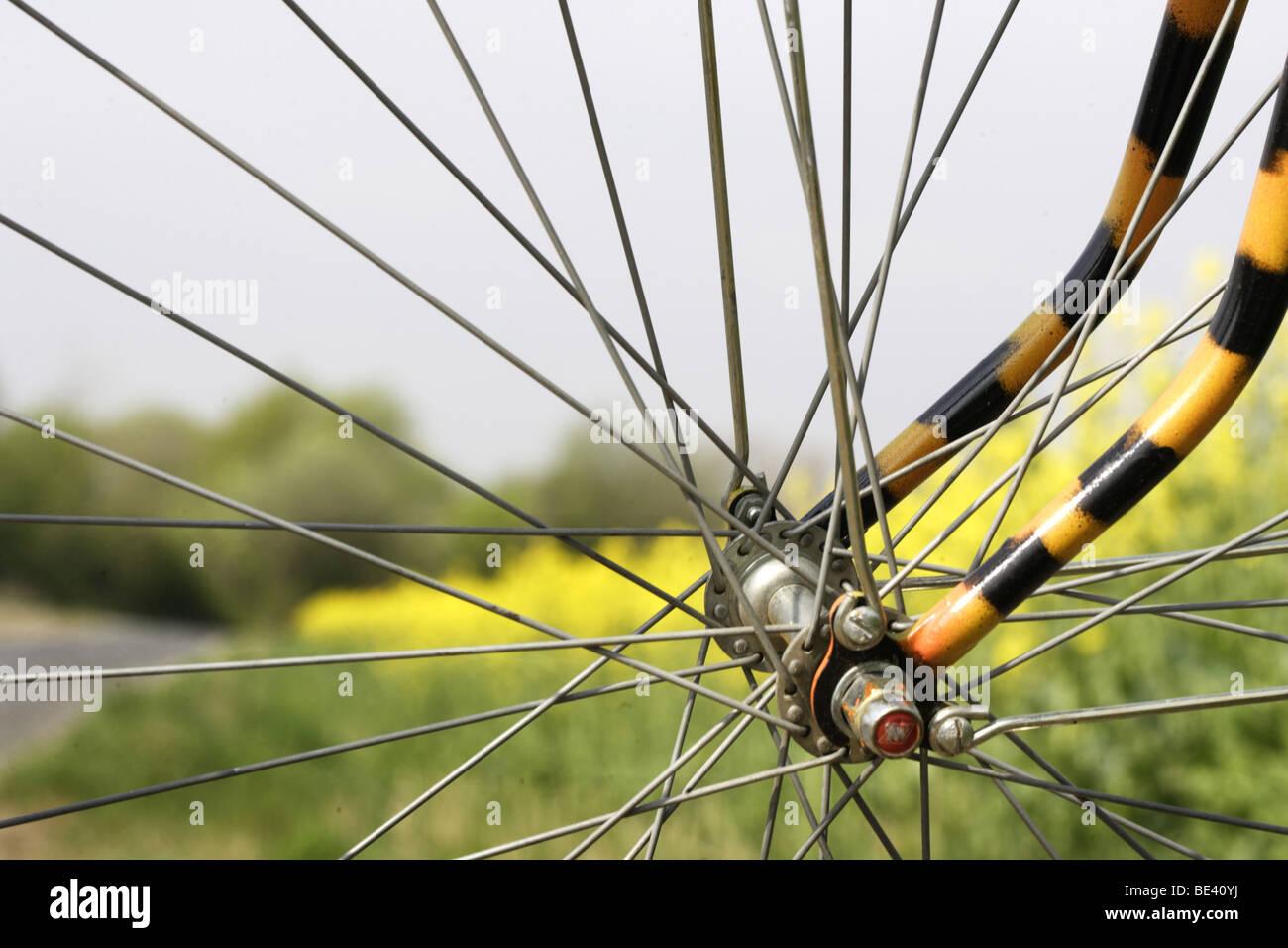 Blick durch ein Vorderrad auf ein Rapsfeld Stock Photo