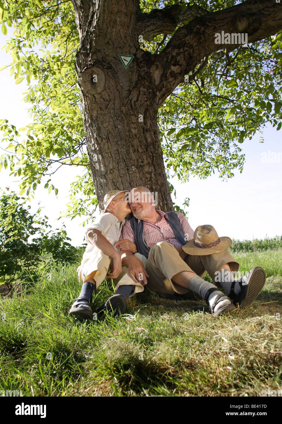 Ein Seniorenpaar kuesst sich unter einem Baum Stock Photo