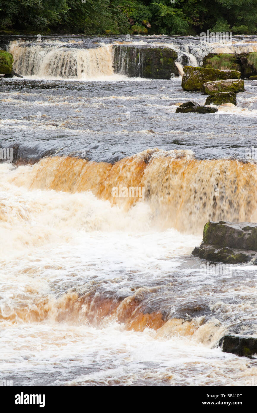 Aysgarth Falls at Aysgarth in the yorkshire Dales National Park, UK. The water is stained orange by its load of - Stock Image