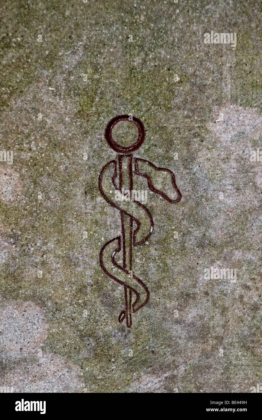 Aesculapian staff, rod of Asclepius carved into a wall, symbol of the medical and pharmaceutical professions Stock Photo