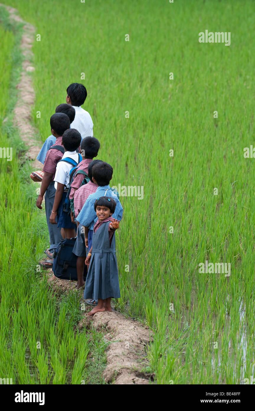 School Children Uniform Walking Stock Photos & School
