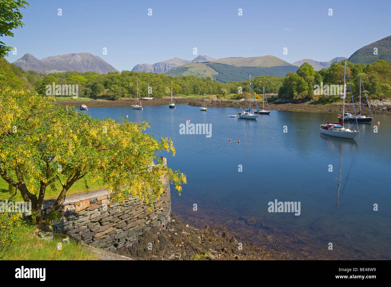 Loch Leven, Bishop's Bay, looking to Pap of Glencoe, North Ballachulish, Highland Region, Scotland, June, 2009 - Stock Image