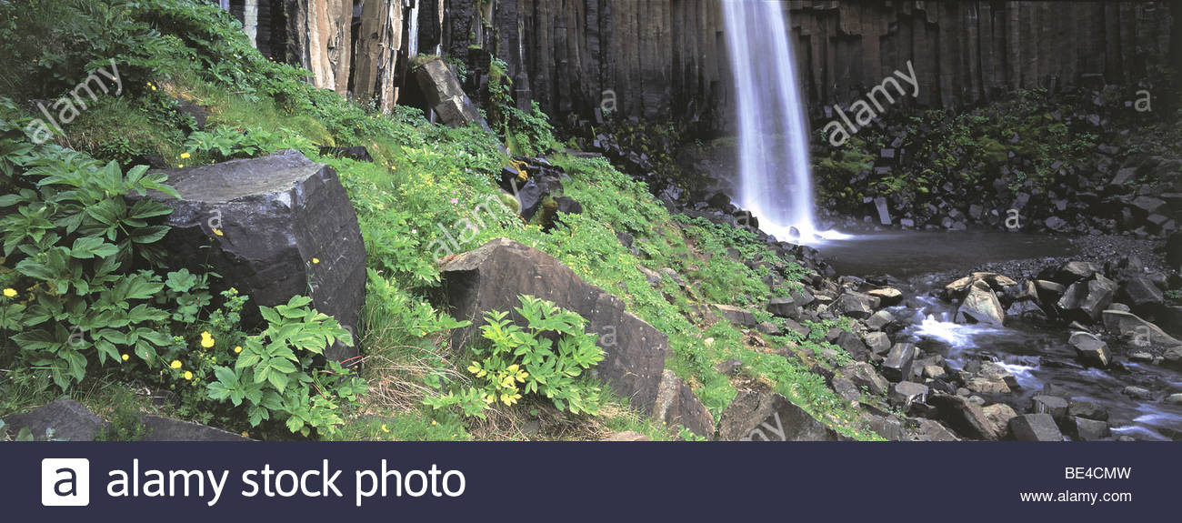 Iceland,Skaftafell National Park, Svartifoss Waterfall - Waterfall in a forest Stock Photo