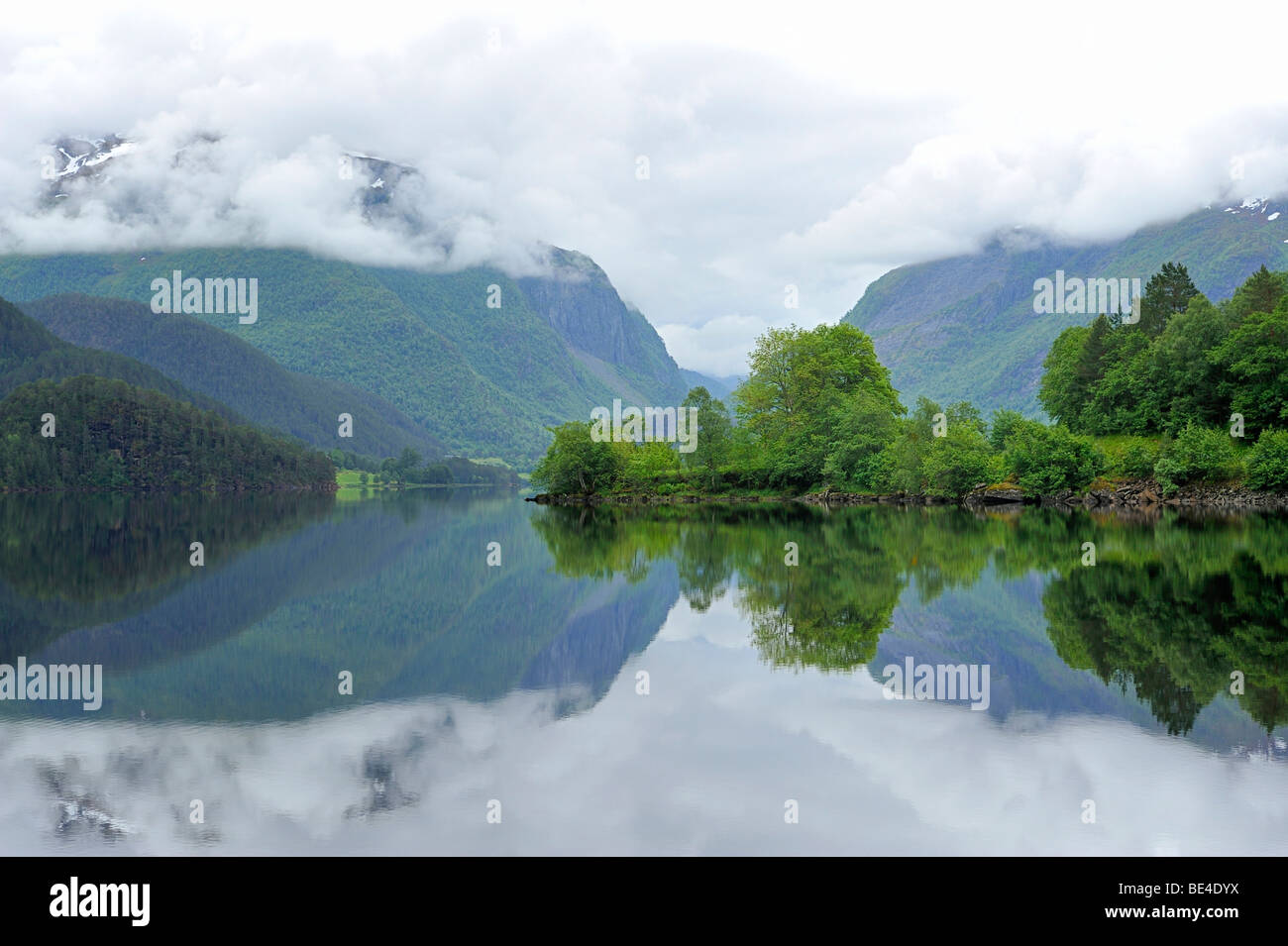 Forest is reflected in the Bjorkedalsvatnet lake near Volda, Norway, Scandinavia, Europe - Stock Image