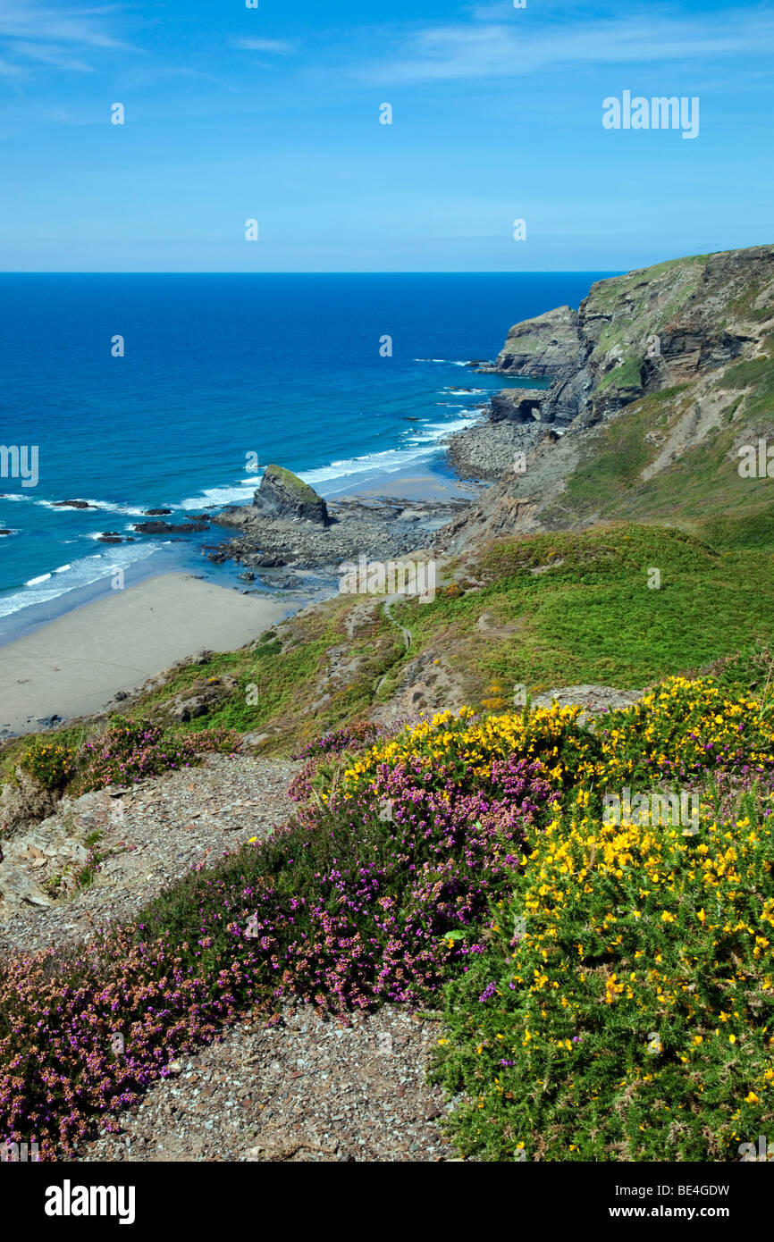 the strangles; near crackington haven; cornwall - Stock Image