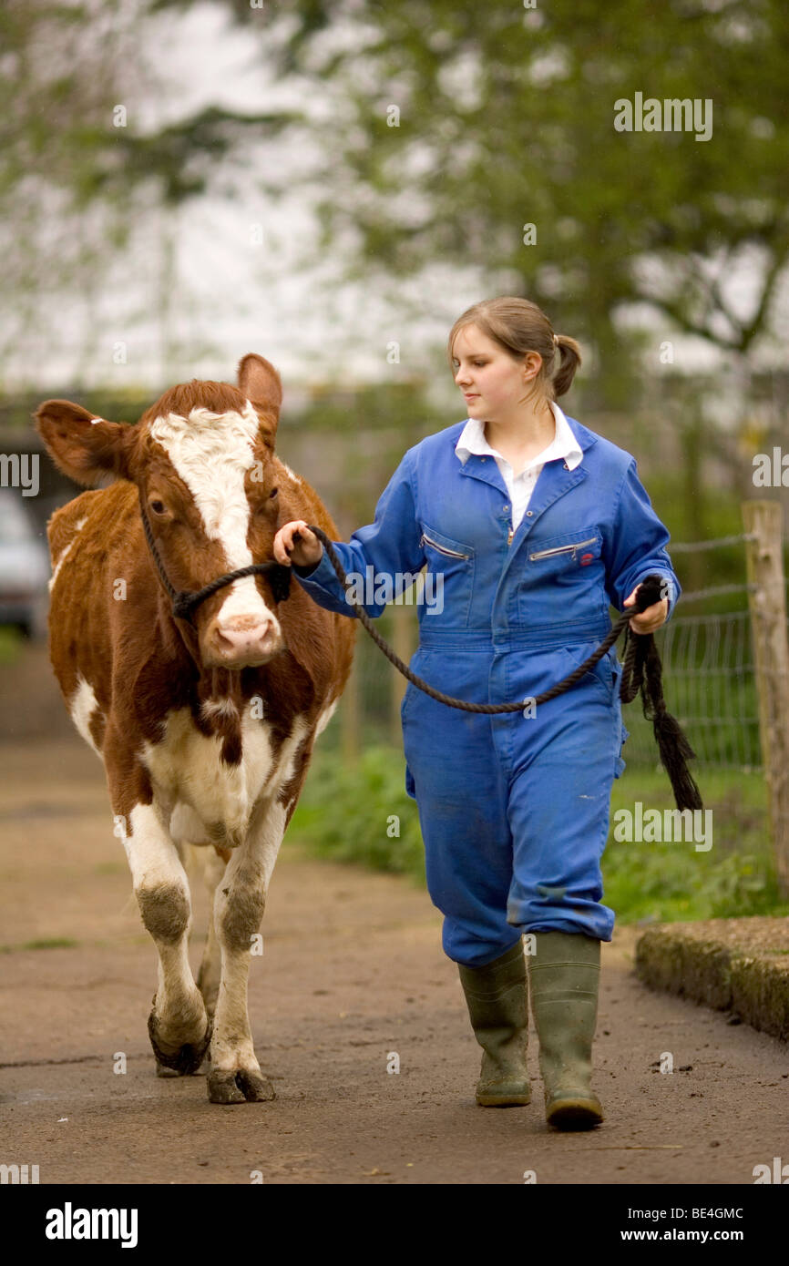 Pupils at Oathall Community College in Haywards Heath in West Sussex UK benefit from a farm on the school grounds - Stock Image