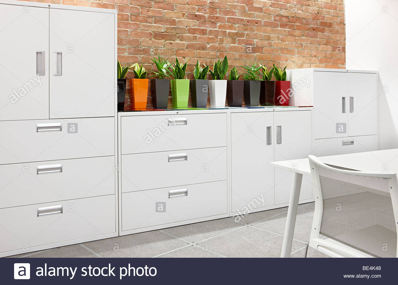 office white metal filing cabinets cactus Stock Photo