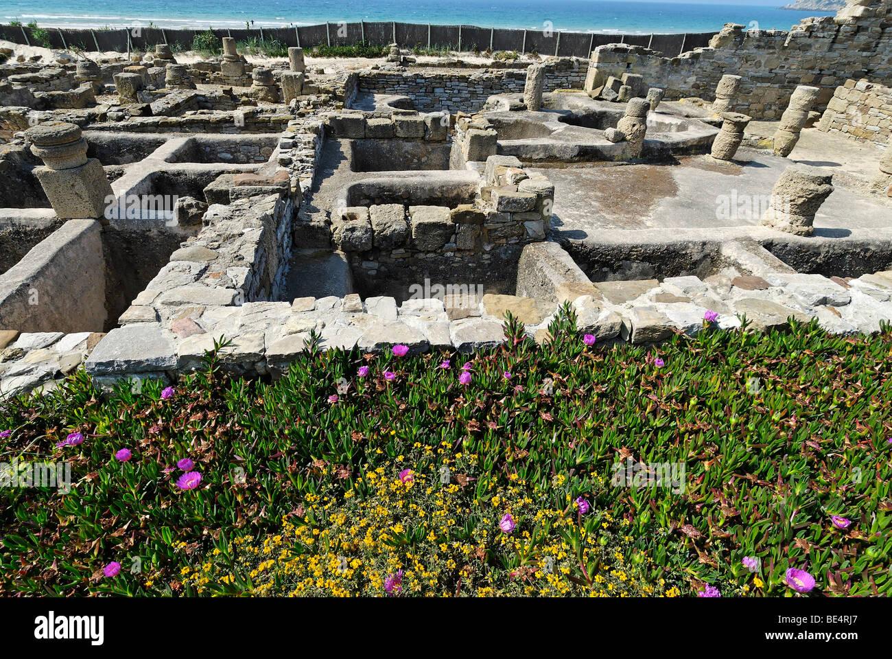 Ruins of the factory for garum, archeologic park Baelo Claudia near Tarifa, Andalusia, Spain, Europe - Stock Image