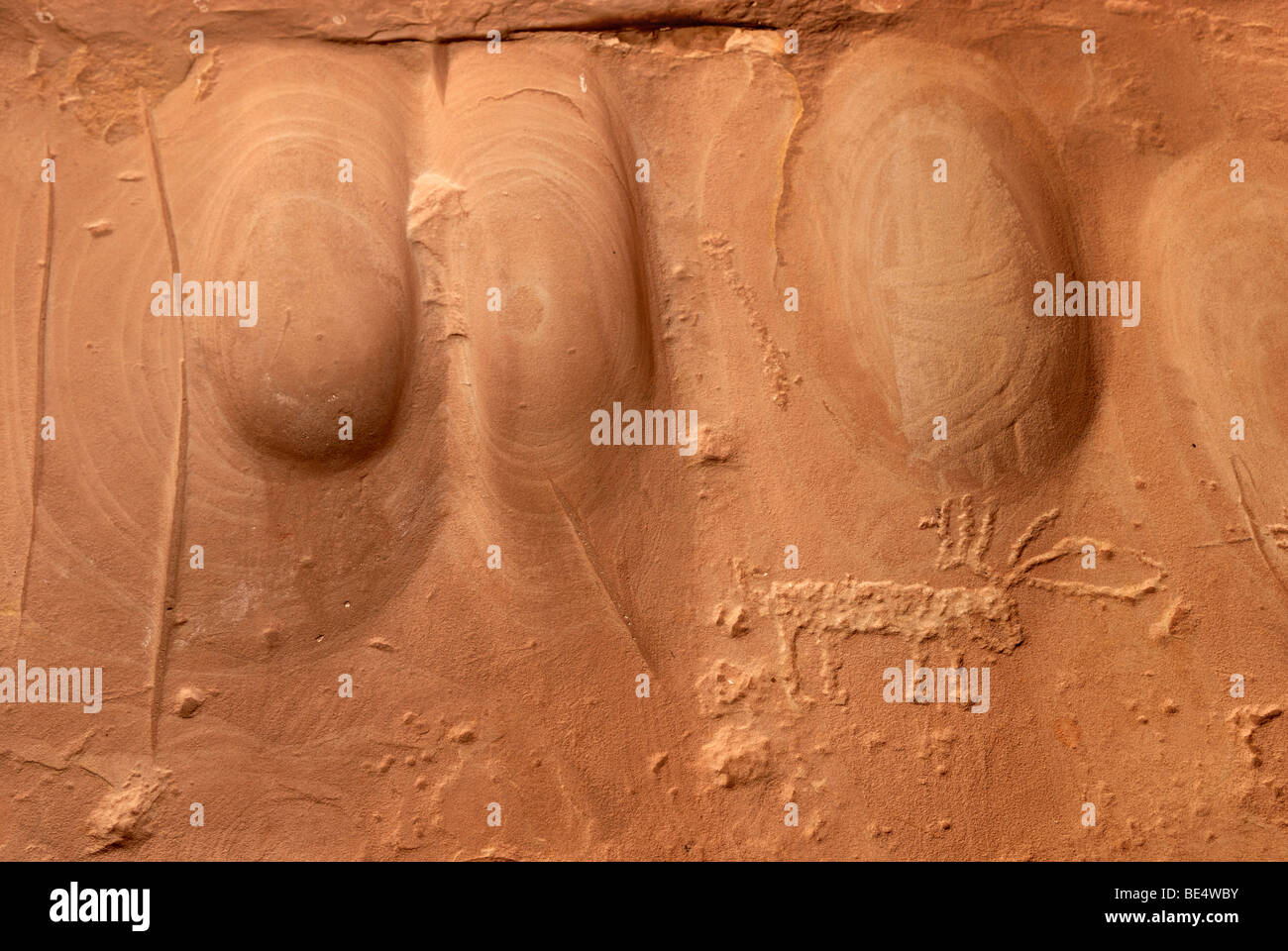 Grinding troughs with an engraved deer, petroglyphs on red sandstone, about 900 years ago, Anasazi Indians, Cold - Stock Image