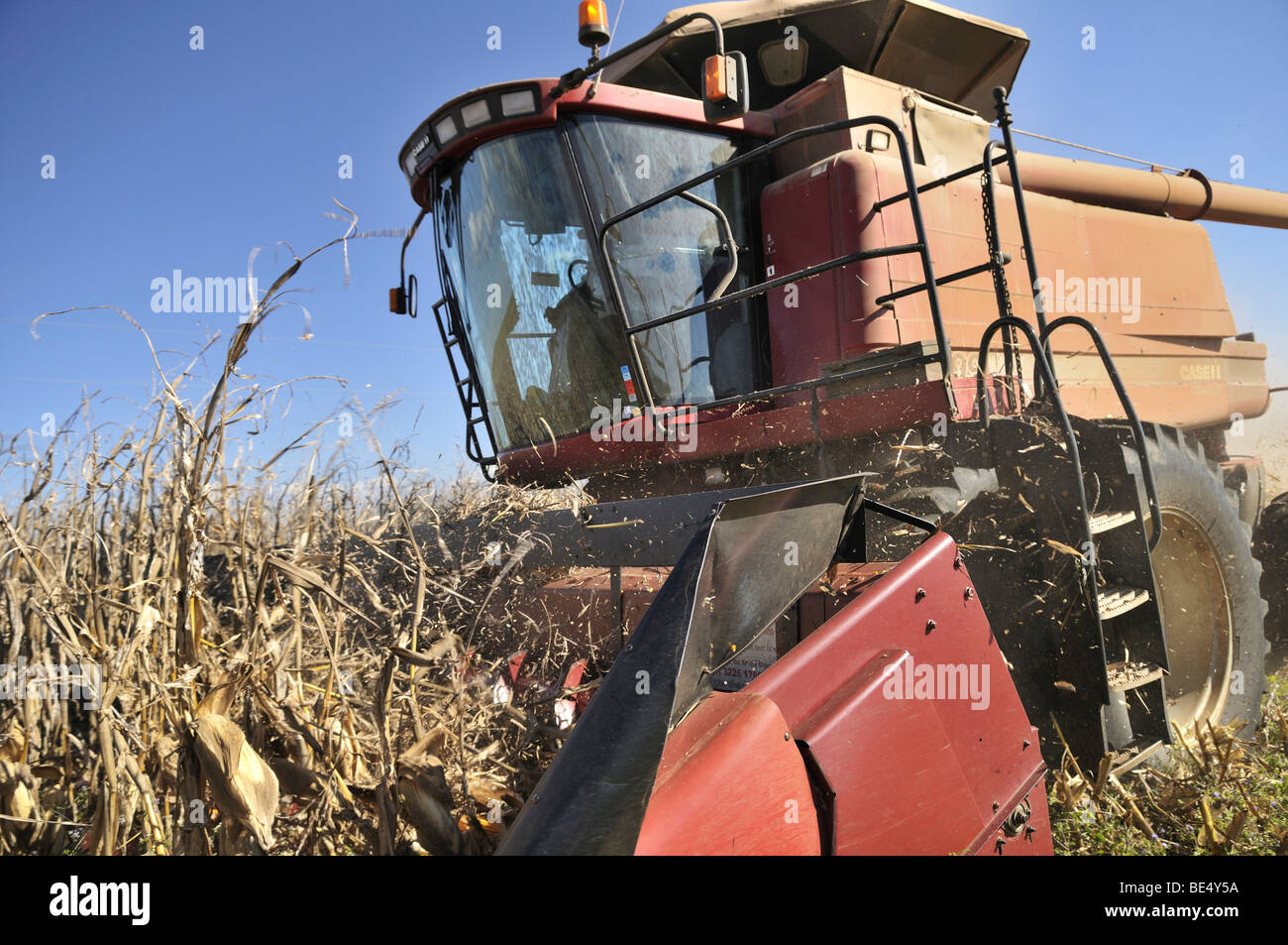 Combine harvester during the corn harvest, Uberlandia, Minas Gerais, Brazil, South America - Stock Image