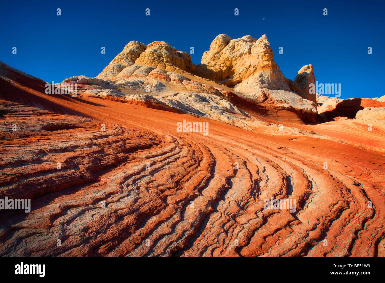 Sandstone ridges at White Pocket in Vermilion Cliffs National Monument, Arizona - Stock Image