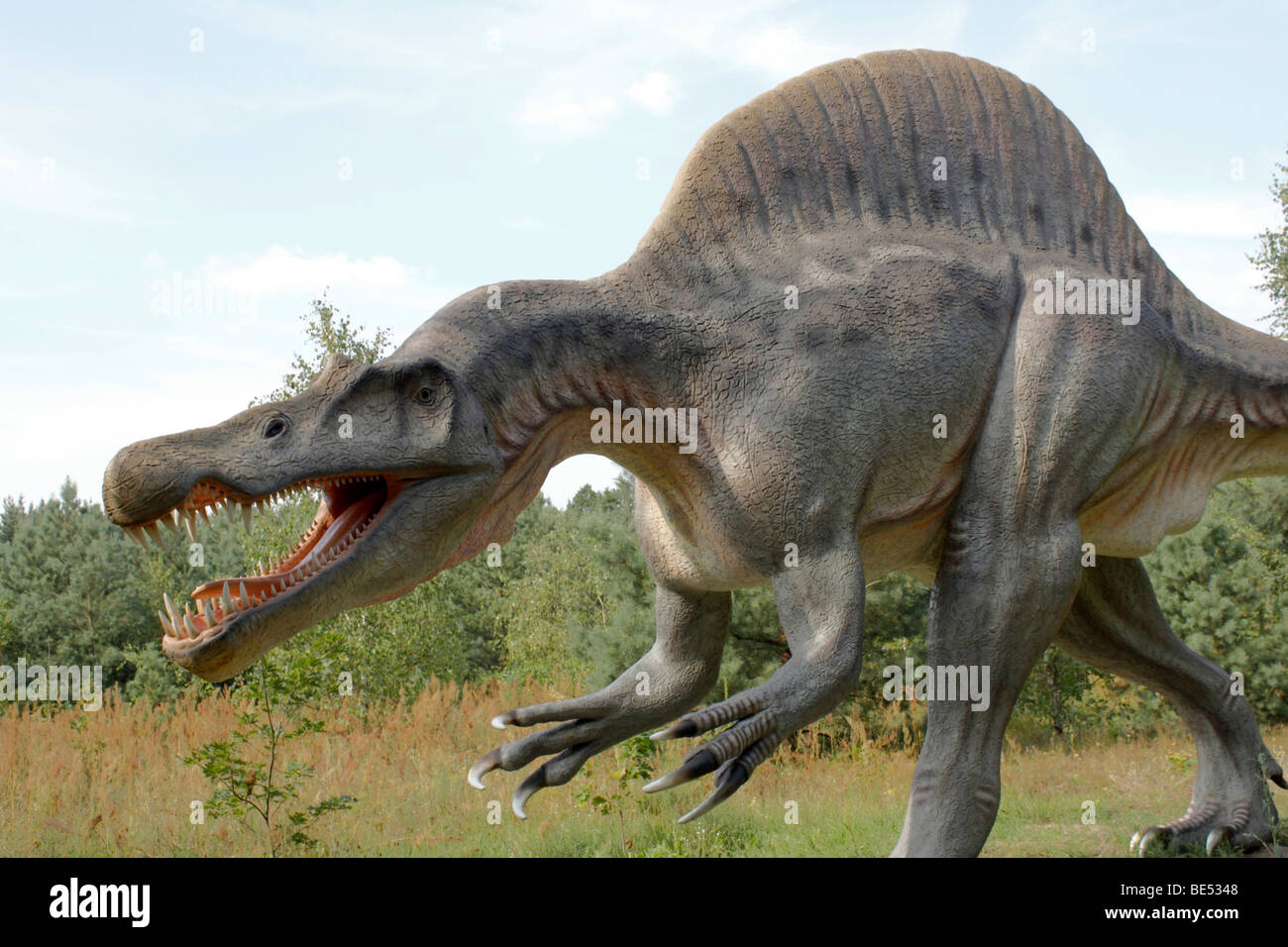 Prehistoric Park,  Spinosaurus, real size replica, 2009 - Stock Image