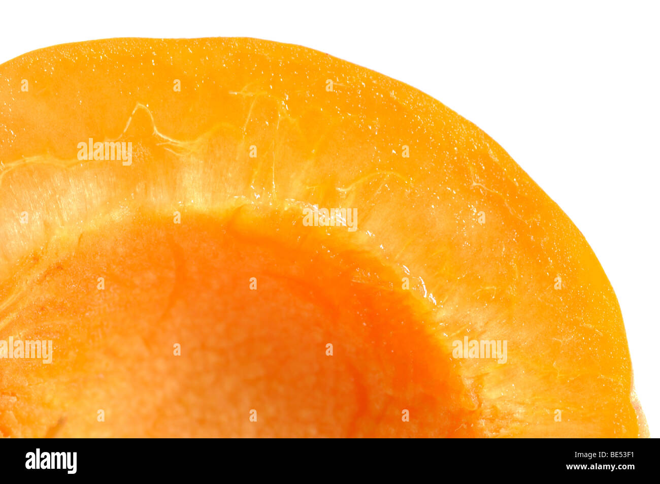 Fresh juicy apricot just picked up in the garden - Stock Image