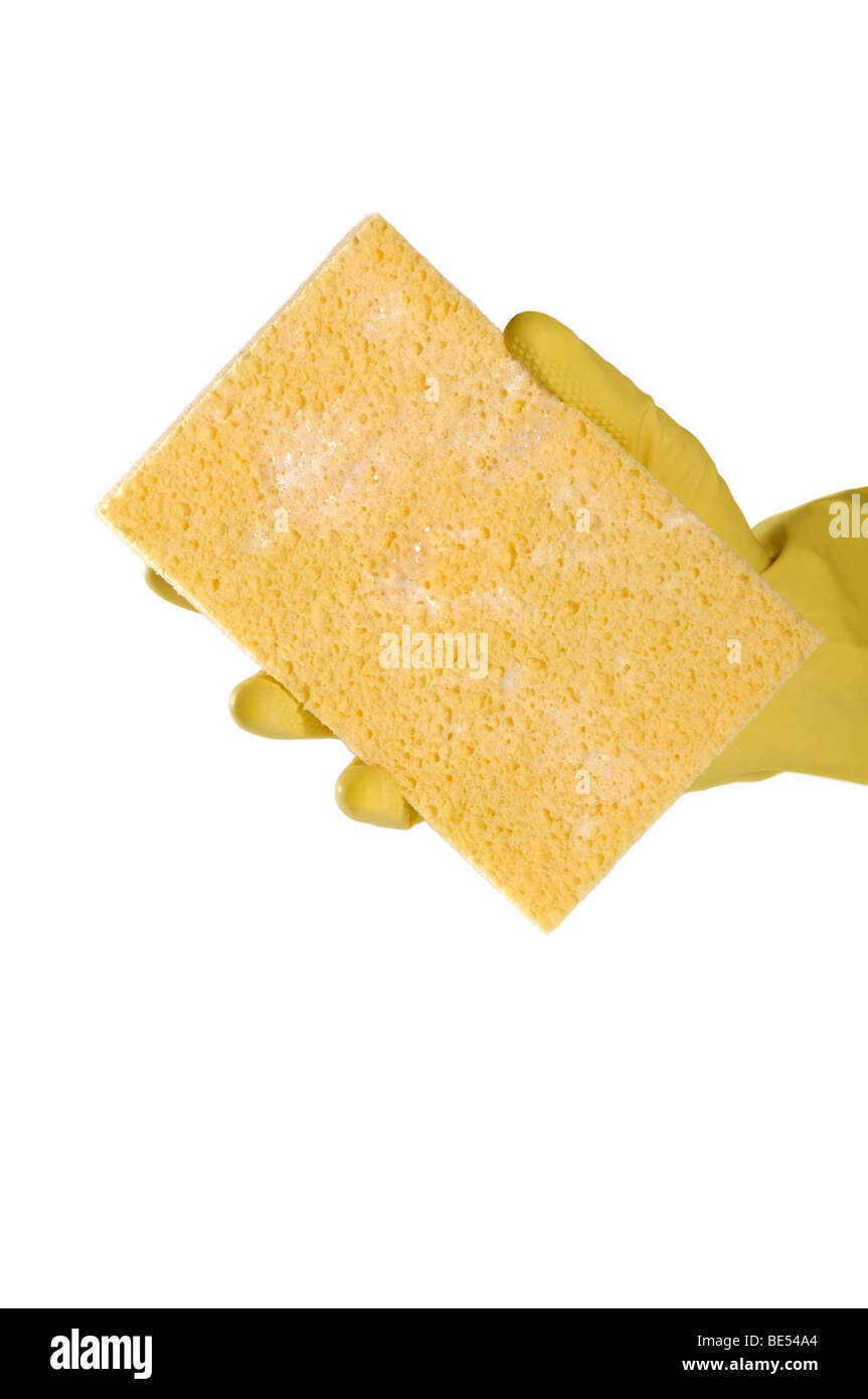 Yellow sponge in a glove Stock Photo