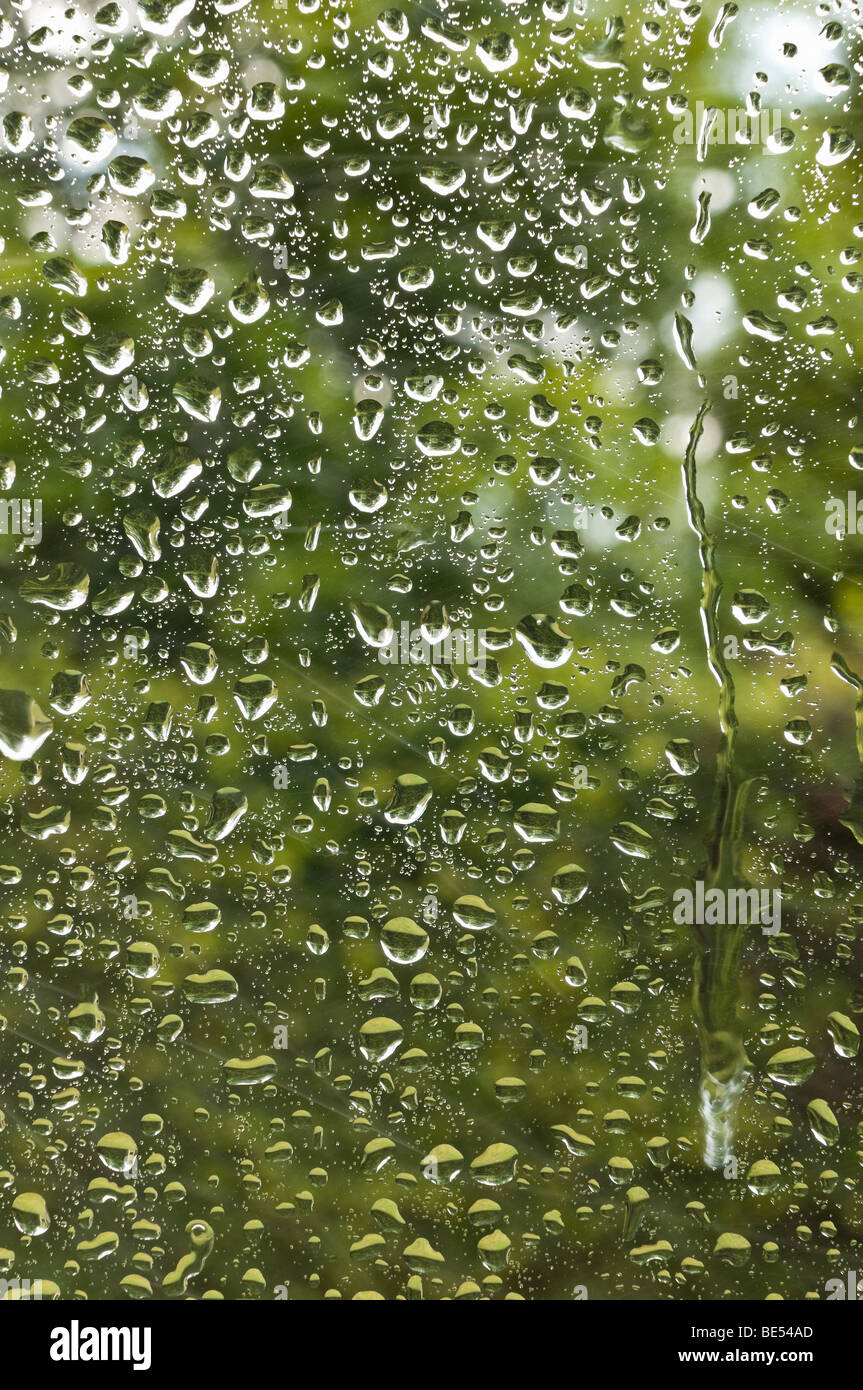 Rain on a window pane - Stock Image