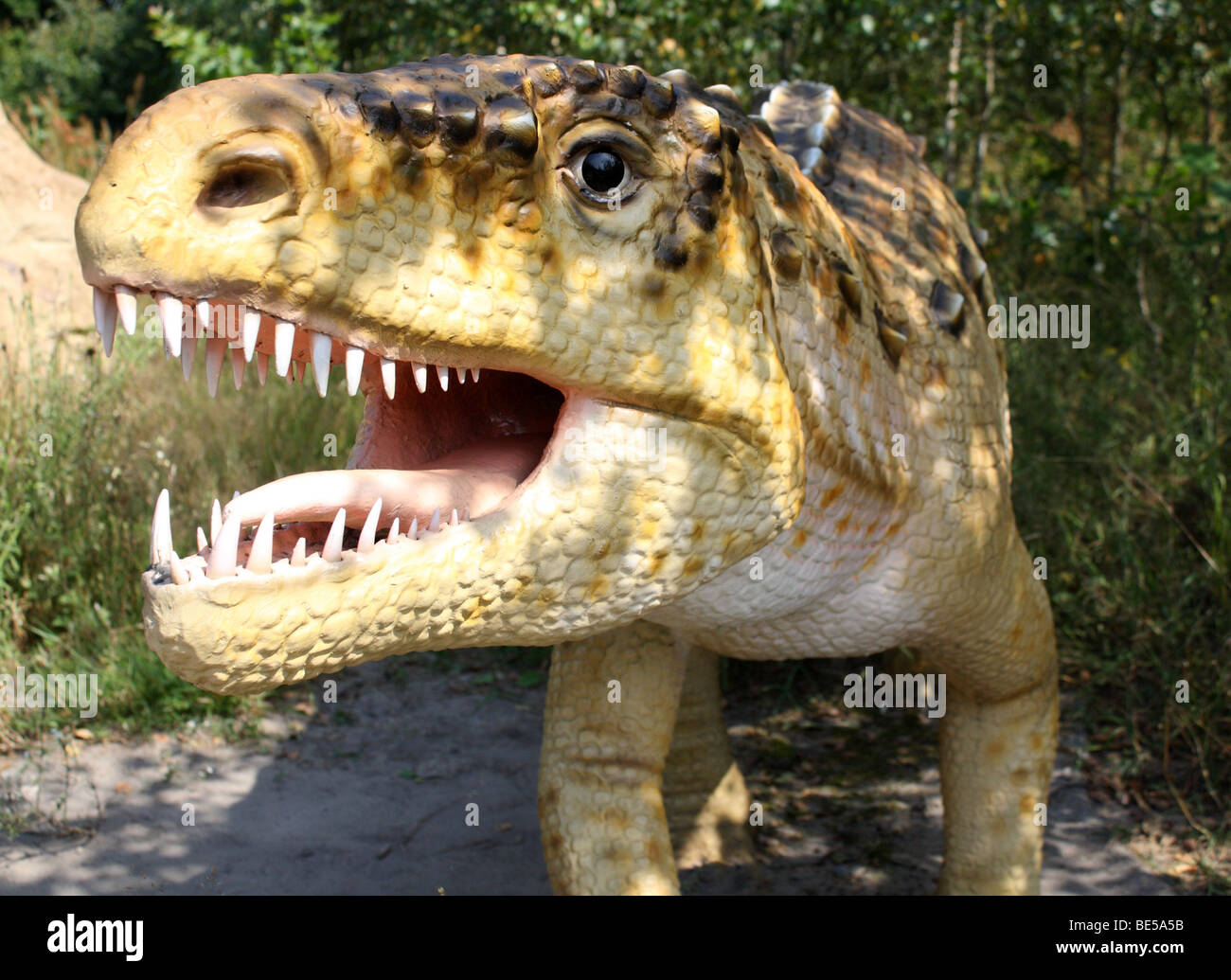 Ornithosuchus (meaning 'bird crocodile') is an extinct genus of crurotarsan from the Late Triassic of Scotland. - Stock Image