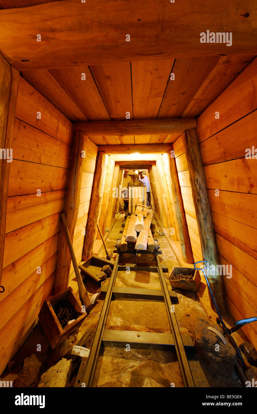 Gallery for ore mining, mining museum Achtal near Teisendorf, Upper Bavaria, Germany, Europe - Stock Image
