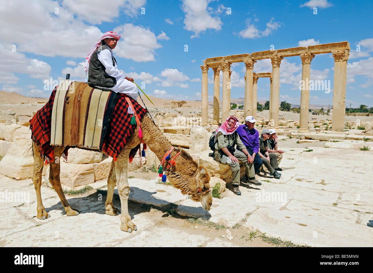 Palmyra Syria Tourist Camel Stock Photos Palmyra Syria Tourist