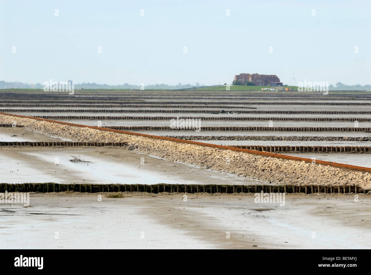 View over mud flats at low tide, the groyne and the Lorendamm dam leading to Hallig Nordstrandischmoor, Schleswig - Stock Image