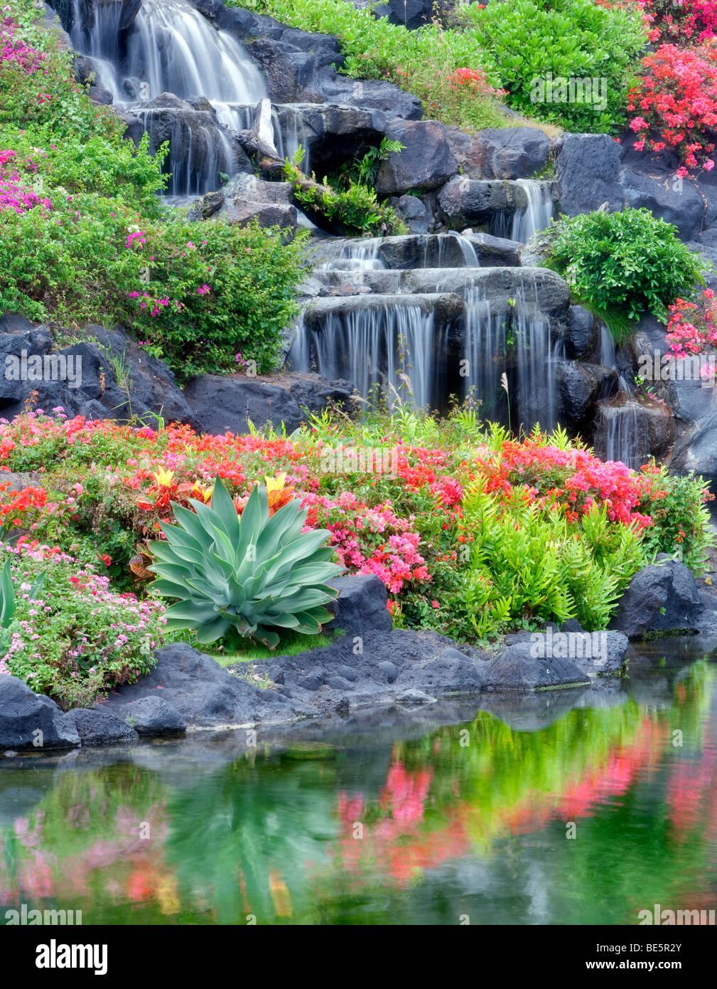 Waterfalls And Flower Gardens At The Grand Hyatt, Kauai