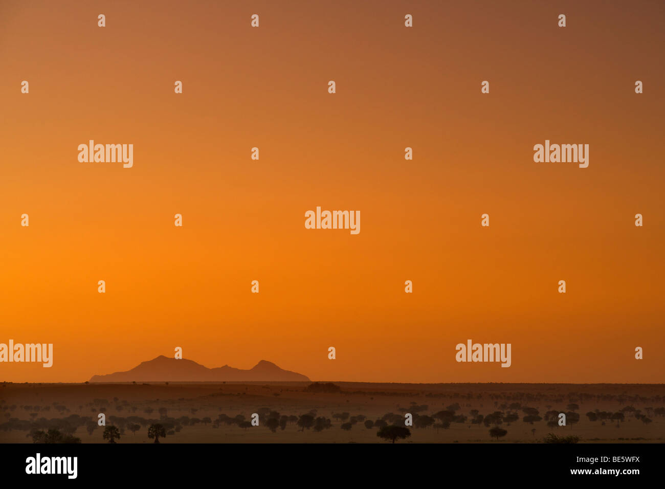 Mount Morungole seen from the Kidepo Valley National Park in northern Uganda at dawn. - Stock Image