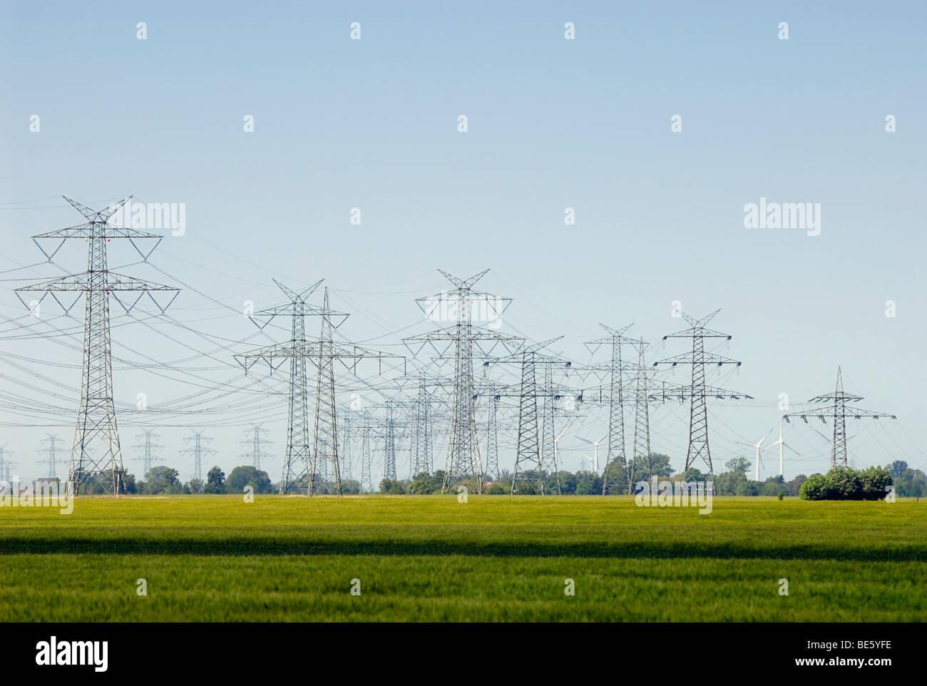 Overhead line, high-voltage line in the agricultural landscape, Krempermarsch, Steinburg district, Schleswig-Holstein, - Stock Image